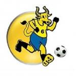 Budasubba Promotion Cup logo